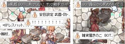 NO! BOT!!